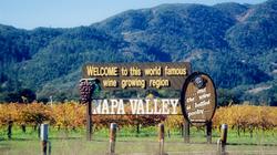 世界级红酒庄园-纳帕谷地
