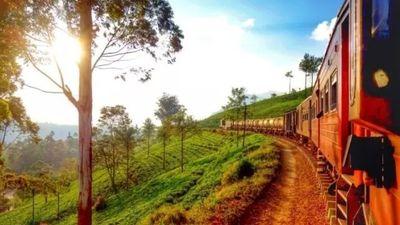 茶厂高山小火车