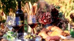 纳帕庄园品世界精品红酒