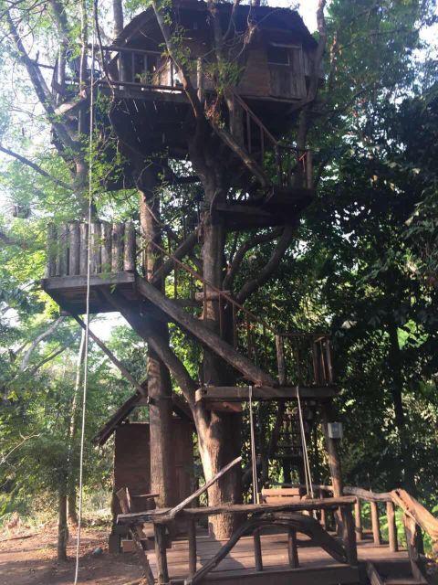 拉比昂帕萨克树屋度假村(rabeang pasak tree house resort)点评