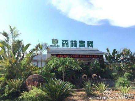 森林客栈(儋州两院植物园店)点评