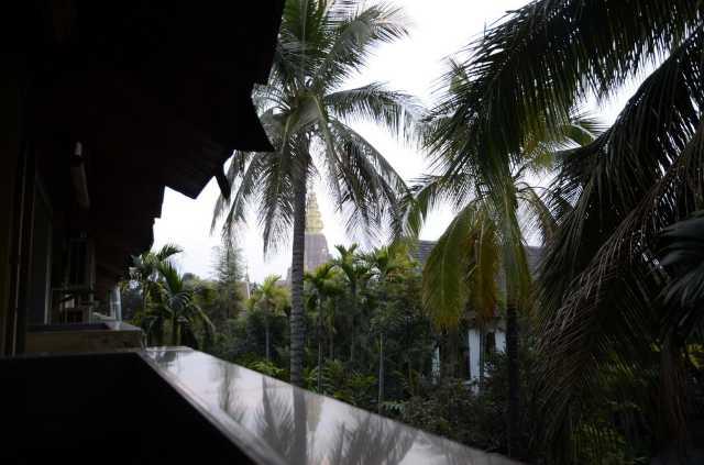西双版纳与儿子一起渡过了一个愉快的旅行!先说说住宿,我在携程网上看到南泥湾客栈,选择的原因是酒店的装饰更显出具有民族风格,木质的装饰突出傣族阁楼气息,加上小阳台喝茶,聊天,背景衬托者绿植,椰树,大金塔,景色宜人,真实居住在热带雨林之中,别具东南亚风格。我是北方人对这种热带风景所着迷,游玩回来犹如回到家中,坐在阳台听着鸟鸣,喝着茶和儿子谈谈一天的所见所闻,真是暇意!这边睡觉较晚夜间很是热闹,起床较晚8.
