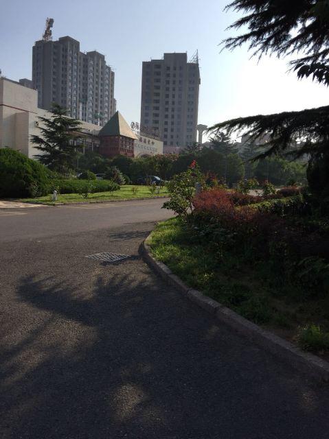青岛海滨花园大酒店点评