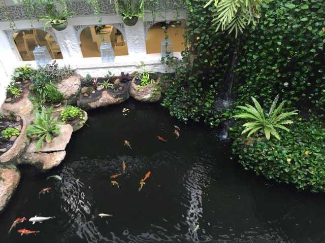 普吉岛塔夫棕榈海滩度假村(thavorn palm beach resort phuket)点评