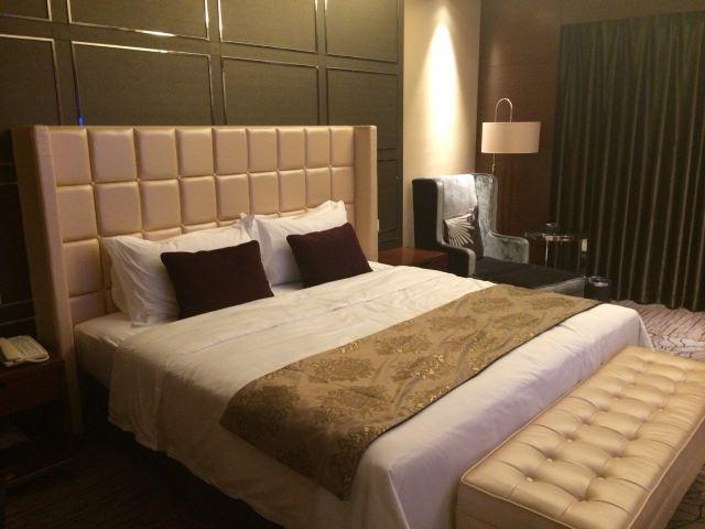 酒店位置还是可以的,酒店设计还是人很人性化的,晚上自助餐也很丰富,味道还可以,房间够大,但是我住的是对后面写字楼,声音有些大,还有冲凉房没有顶大花洒头有点不爽,整体上还能接受,没有SPA会所,总觉得差了一点东西,因为习惯了在酒店按摩,所以这对我个人的要求不是那么理想,希望以后改正,下次如果到新塘也会选择这里住。