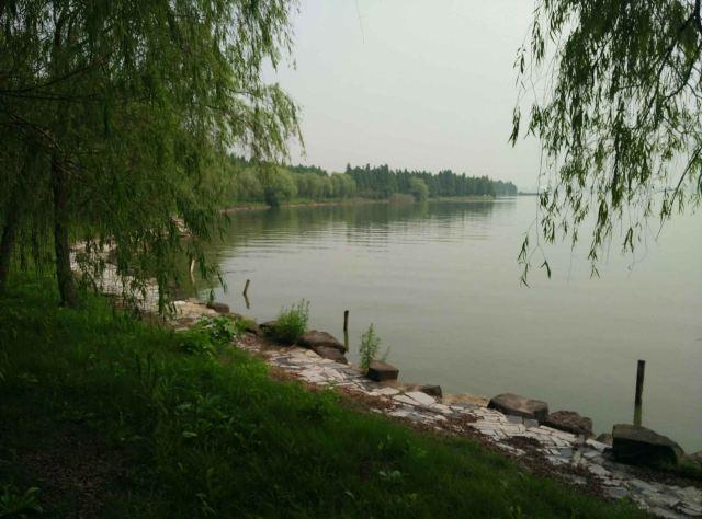 酒店坐落于明珠湖边,房间不多,非常安静,风景非常优美,适合不带任何负担地放松心情,在湖边躺椅上睡睡觉(我第二天早上就在湖边椅子上吹着风望着头顶的柳树和水波的声音,舒服地睡了一两个小时,人很少,完全没打扰,又很放心,很有安全感)。酒店后面就是长长的湖边木栈道,垂柳飘扬,很美!晚上围绕酒店跑了六点几公里。很适合跑步,晚上在餐厅吃的,点了豆腐,红烧鱼,炒时蔬,味道很好吃,比平常出去吃饭的平均期望值高,非常回味。早餐虽不像五星级酒店一样高级,但还比较丰富,比较靠中式。不足:饭店没有游泳池,没有小的KTV房间,所以