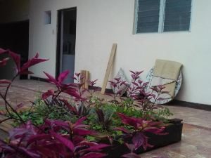 Home Yuntawasi Backpackers Tarapoto