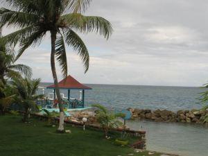 Chrisanns Beach Resort Apt 21