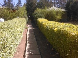 Mt. Kenya Royal Cottages