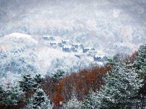 木屋度假酒店(Chalet Resort) 洪川郡