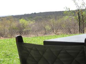 Bed in The Bush - Tingala Lodge