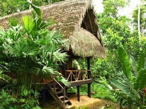 Cotococha Amazon Lodge - Napo River Lodge