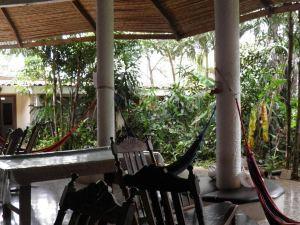 Hostel Pura Vida Tamarindo