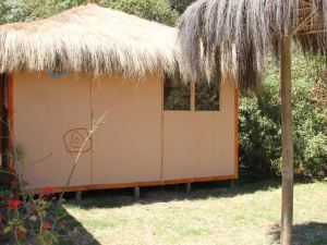 Hostal El Arbol Beach