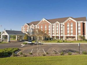 힐튼 가든 인 잭슨 매디슨 (Hilton Garden Inn Jackson/Madison, MS)