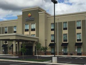 컴포트 인 & 스위트 린치버그(Comfort Inn & Suites Lynchburg)