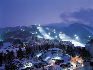 江原道平昌龍平度假村龍谷酒店(YongPyong Dragon Valley Hotel Gangwondo) 平昌郡