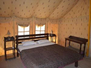 Colonel's Camp Oasis India
