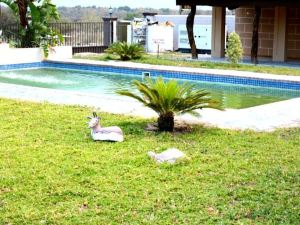 Senthaga Guest House & Safaris
