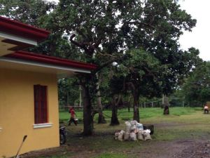 The Yellow House in Camiguin