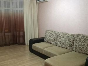 Apartment on Chkalova 51/1