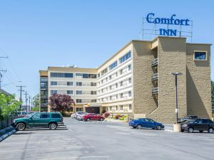 Comfort Inn University District/Downtown