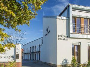 沃拉里克旅館(Penzion Volařík) 多爾尼杜納基爾維埃斯