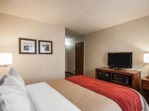 컴포트 인 (Comfort Inn Pocatello)
