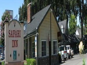 사파리 인 (Safari Inn)