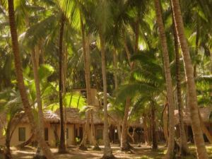 Munjoh Ocean Resort - Havelock Island