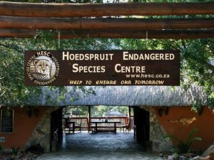 Hoedspruit Endangered Species Centre