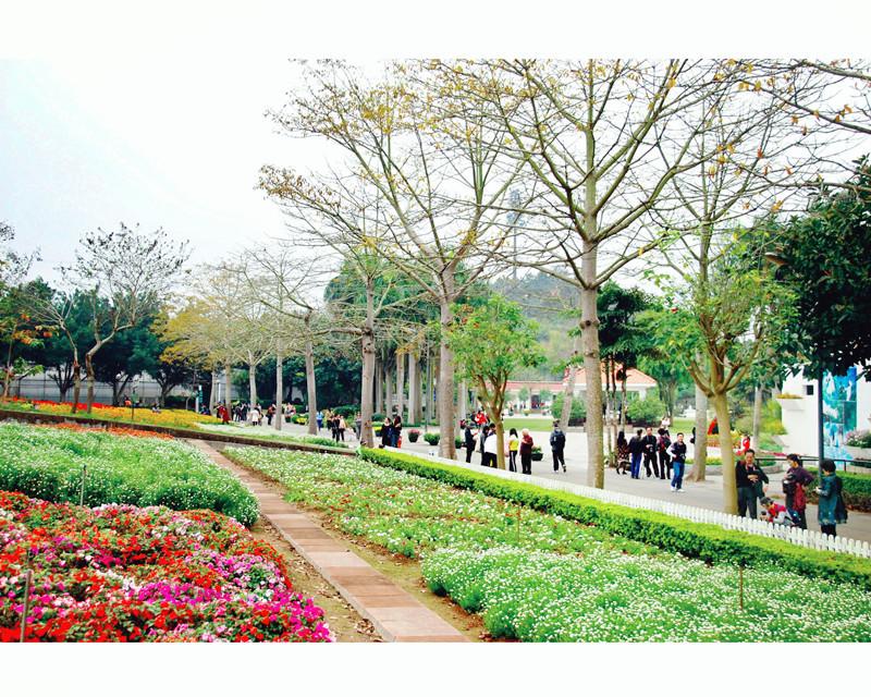 三角洲岛+永记生态园+动物园