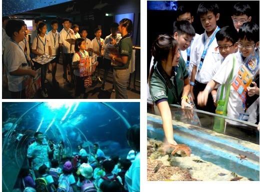 特色五: 环球影城 动物园 夜宿海洋馆,体验独特新加坡文化!