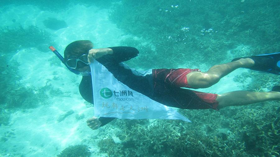 壁纸 海底 海底世界 海洋馆 水族馆 900_504