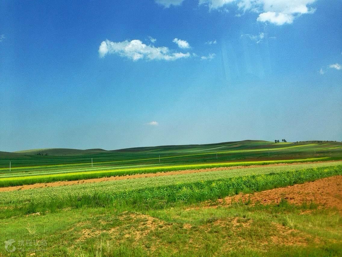 呼和浩特+希拉穆仁草原
