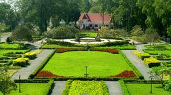暹粒莱佛士 酒店花园