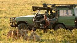 马赛马拉拍摄动物