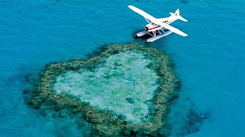 美丽的大堡礁