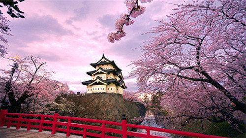 【春天在哪里】日本赏樱5天4晚·河津早樱 伊豆温泉 东京