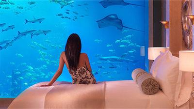 亚特兰蒂斯酒店 Neptune and Poseidon水下套房