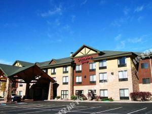 햄프톤 인 글렌우드 스프링스, 콜로라도 호텔 (Hampton Inn Glenwood Springs)