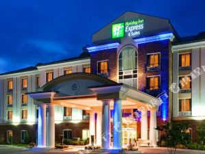 Holiday Inn Express Hotel & Suites Millington Memphis Area