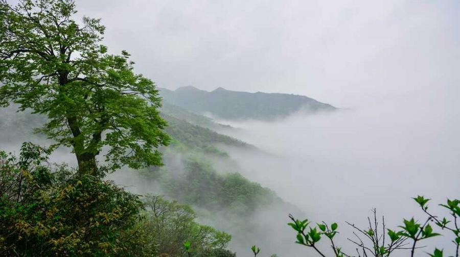 休闲游·南山牧场西白杨沟风景区