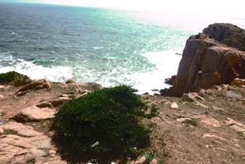 9月周末2日嵊泗枸杞岛亲子自由行,游玩、住宿攻略手游神雕古墓图片