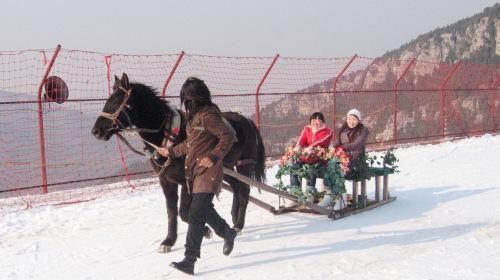 济南九顶塔滑雪场直通车一日游(济南进出)
