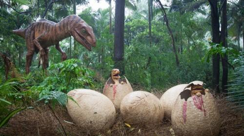 广州番禺长隆野生动物世界一日游
