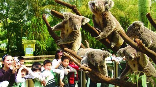 摄影之旅·北京2日跟团游·动物园+世界最大内陆水族