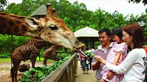 香江野生动物世界4