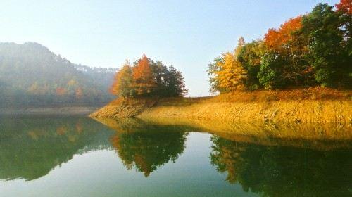 千岛湖2日1晚跟团游·森林氧吧