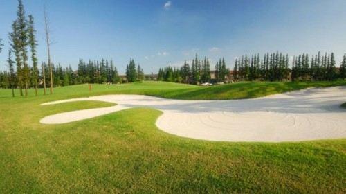 上海东方高尔夫球场1